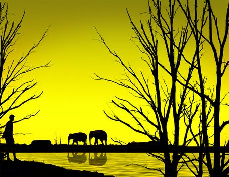 Breathtaking Examples of Silhouette Photography | Everything Photographic | Scoop.it