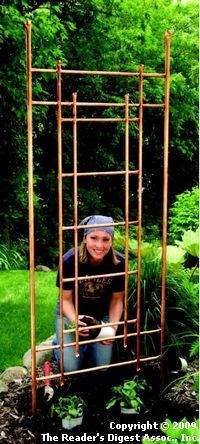 I made this sort of thing-it was actually a 4-sided 9foot x 9foot square arbor- using rerod with pvc pieces at the joints.  Then I spray painted it all with metallic copper paint.  It's covered w/hops, clematis, & honeysuckle.  It's come a COOL secret garden room.