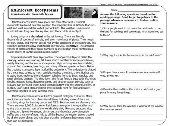expository text worksheets 3rd grade | Informational Text Features ...
