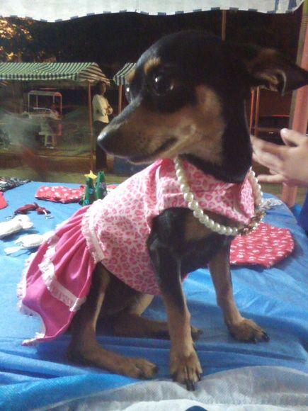Vestido Pet Pink