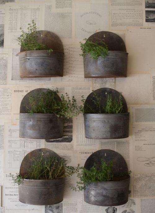 wall mounted planter boxes garden ideas pinterest. Black Bedroom Furniture Sets. Home Design Ideas