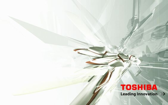 Toshiba Leading Innovation Puzzles Winter Sheets Crystal ...