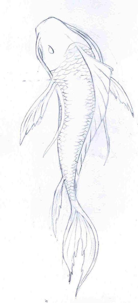 koi fish drawings in pencil - Google Search
