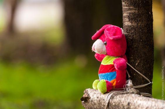 Cool Teddy Love