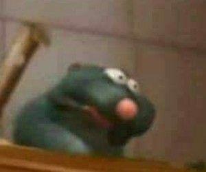 Imagem De Meme Ratatouille And Reaction In 2020 Cute Memes Really Funny Memes Stupid Funny Memes