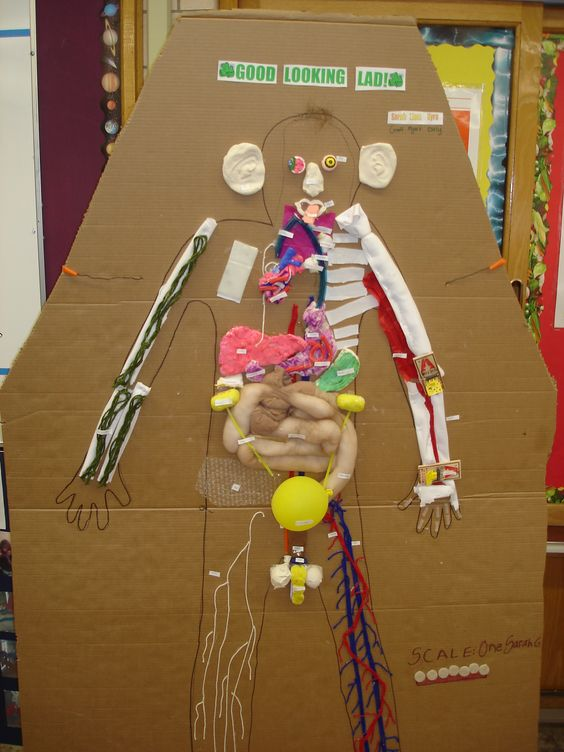 2009 Human Body Project