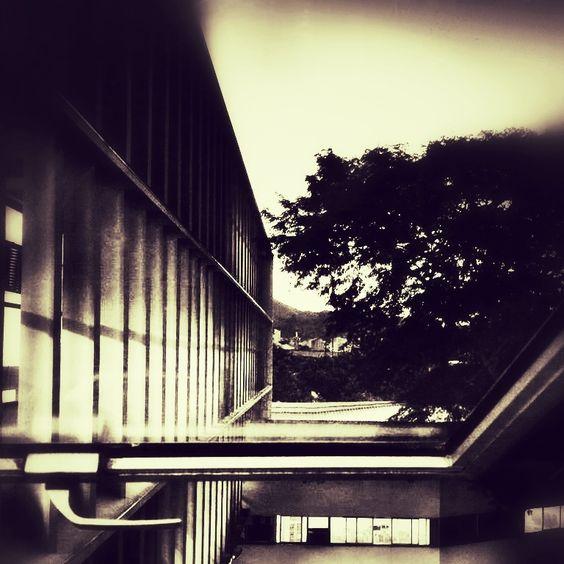 289 - Arquitetura de janela