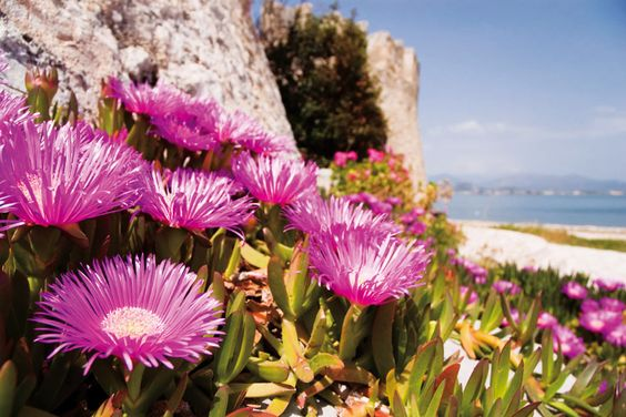 Santorini Fotografie Safari: Marvelous Grecia