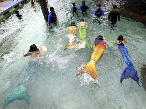 Summer Mermaid Swim Experience in Manila   /   http://photovide.com/?p=174897