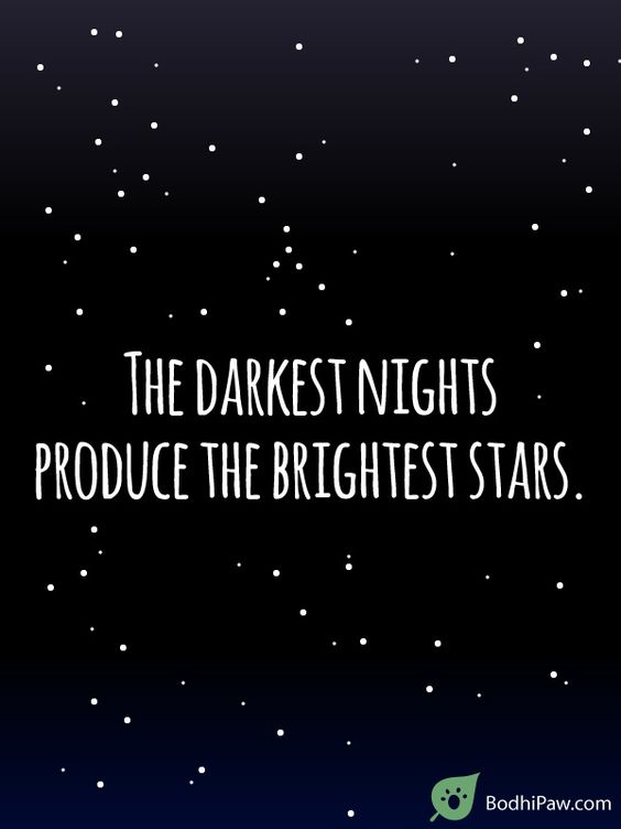 The Darkest Nights Produce The Brightest Stars - Inspirational Quote About Hardship in Life - Bodhi Paw: