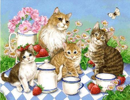 cat Animazione con i gattini fare colazione su un prato in fiore