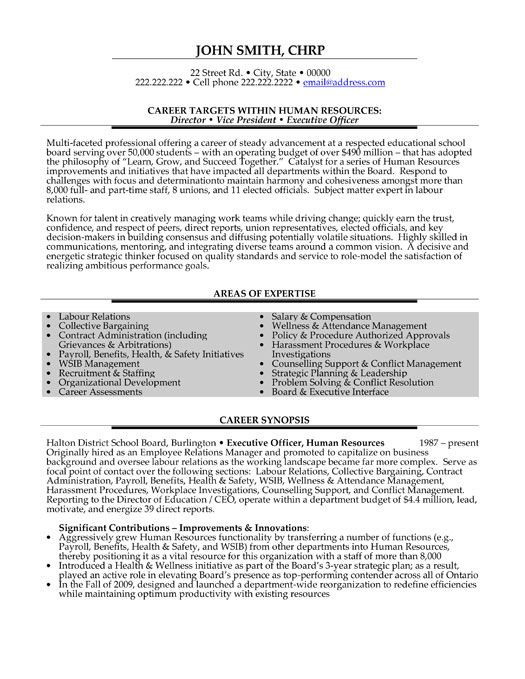 Professional Curriculum Vitae   Resume Template for All Job - vice president of human resources resume