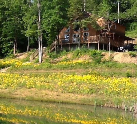 Pinterest the world s catalog of ideas for Daniel boone national forest cabins