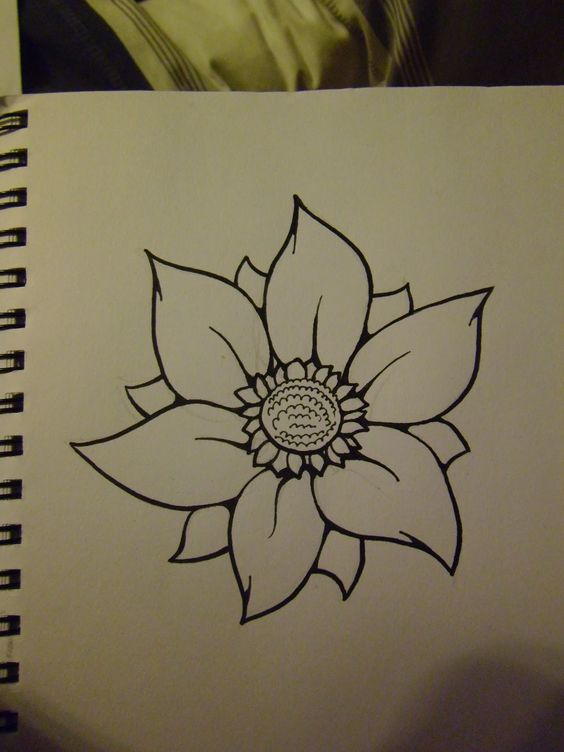 Beautiful how to draw flowers and flower on pinterest for Beautiful and simple drawings