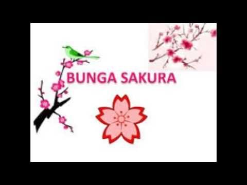 Gambar Bunga Sakura Kanvas Lukisan Bunga Sakura Sederhana Contoh Gambar Lukisan Bunga Sakura Lukisan Bunga Sakura Di Kanvas Gambar Bunga Bunga Sakura Bunga