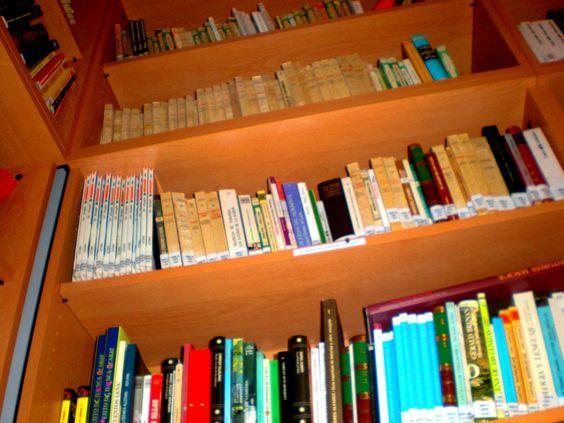 foto 17-en la estantería