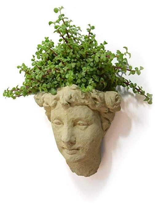 Designer Stone Lady S Head Cast Stone Wall Planter Antique Stone Color Review Wall Planter Planters Garden Pottery