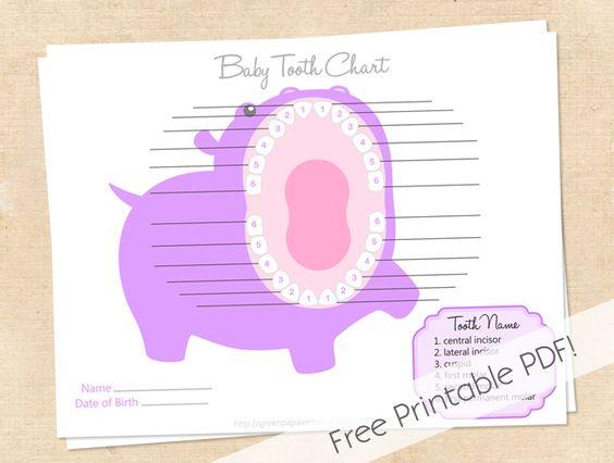 baby teeth chart printable | Free Printable Tooth Chart | Baby ...