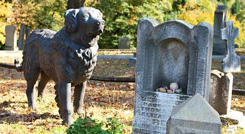 Dog guarding grave in Hollywood cemetery