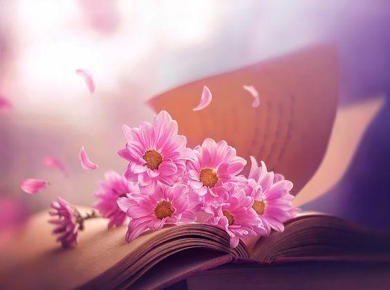 C Est Seulement Lorsqu On Connait La Verite Que La Verite Nous Rend Libre Ce N Est Pas D En Entendre Parler Ou De Lire Des Ar Flores Creatividad Fotos Bonitas