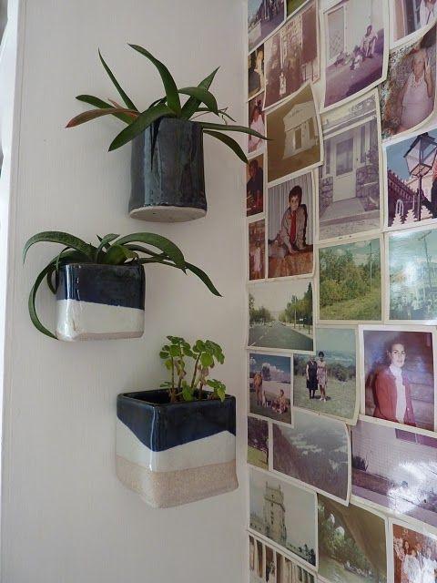 plants on walls.