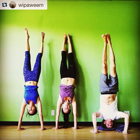 Instagram photo from @yogatreesf