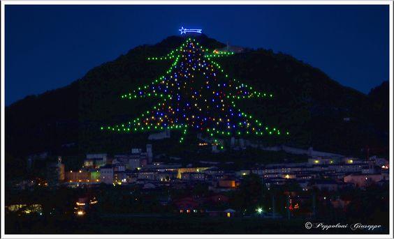 Christmas tree ,Monte Ingino