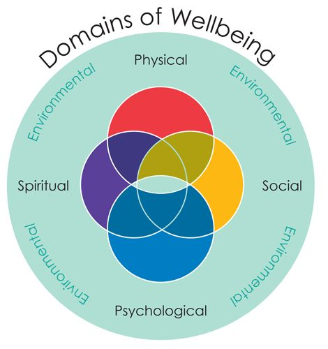 occupational theory and well being Stress management coaching works with individuals and organisations to promote health and well-being in  work and occupational psychology: integrating theory and.