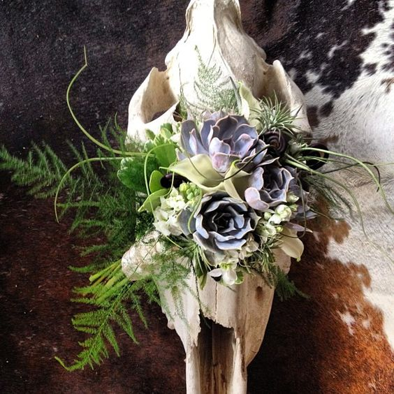 Succulent Bouquet By Seed To Stem Horse Skull Display