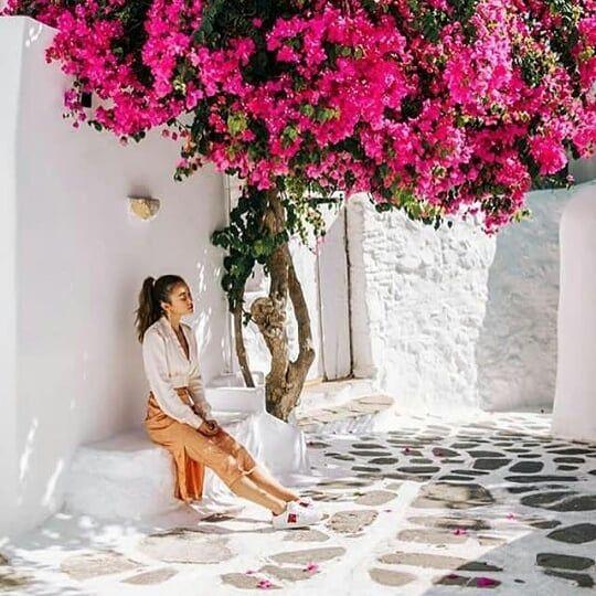 اليونان ارتبطت في عقلي وقلبي بالورد والابواب اليونان ارتبطت في عقلي وقلبي بالورد والابواب والنوافذ الملون Greece Travel Guide Greece Travel Santorini Travel