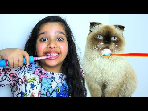 روتين شفا مع قطتها Shfa And Best Cat Stories Youtube Girls Frock Design Basic Embroidery Stitches Frocks For Girls