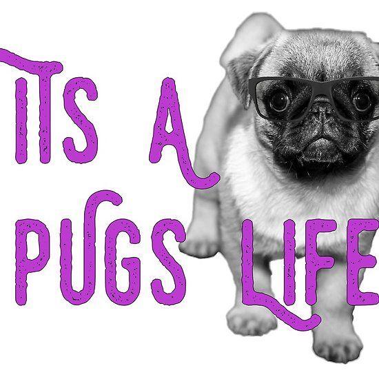 It S A Pugs Life Glasses Pug Life Pugs Long Hoodie