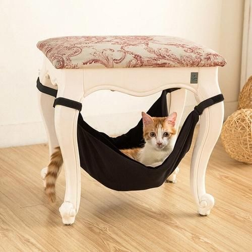 45++ Transparent mesh to build cat condo out of ideas in 2021