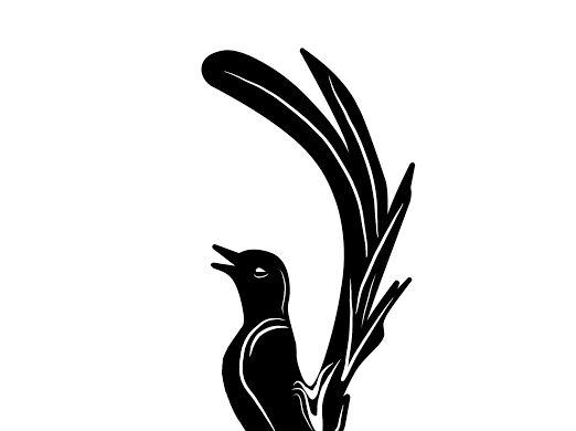 Logo Vector Burung Google Drive Desain