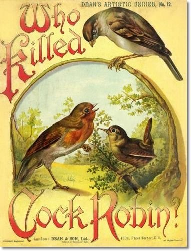 ..the cold wind does blow and we shall have snow, and what will poor cock robin do than, poor thing!!!