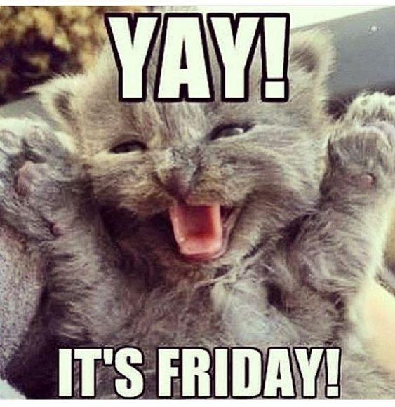 Happy Friday Fun