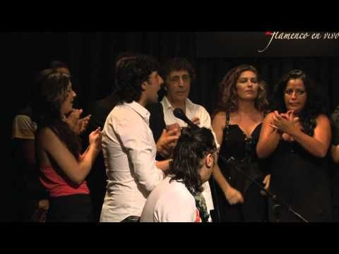 CASA PATAS, FLAMENCO EN VIVO 143 - PELLIZCOS FLAMENCOS: FIN DE FIESTA - YouTube