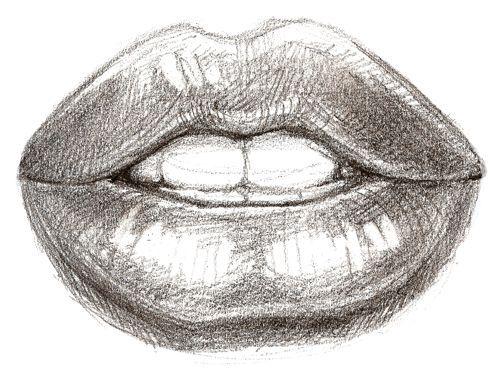 Disegno Labbra A Matita