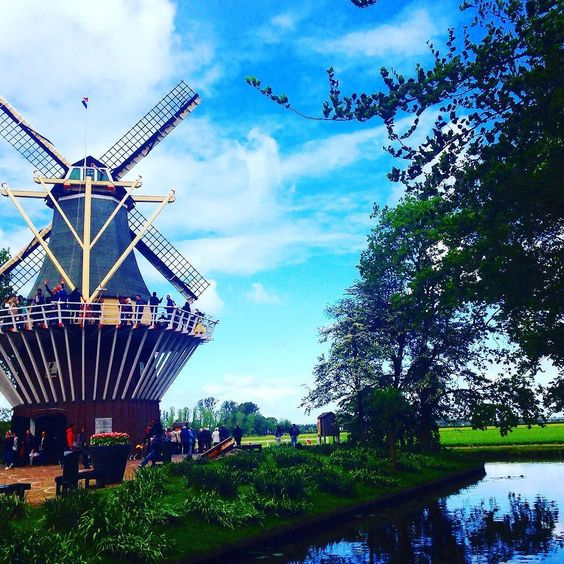 Holland 2016 by manuel_lrc