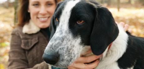Haustier-Vorliebe: Der beste Freund des Hundes - SPIEGEL ONLINE - Nachrichten - Wissenschaft