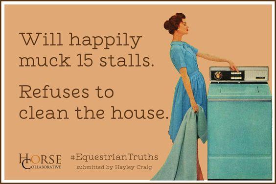 Equestrian Truths 2: