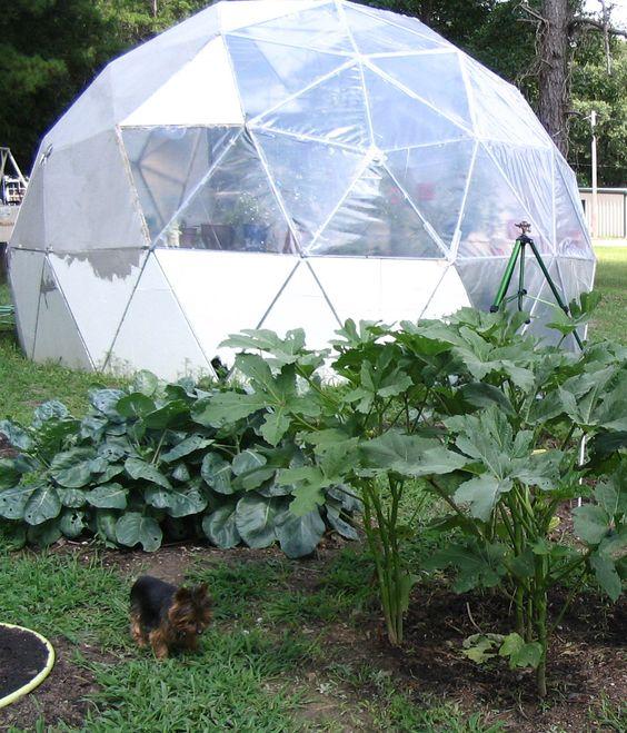 Geodesic Dome Greenhouse!