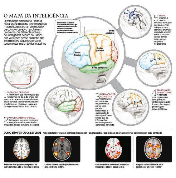 O mapa da inteligência! #Inteligencia #mapa #mente #cerebro #ingografico
