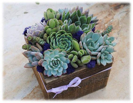 Succulent Centerpiece in Wood Box// Centerpiece // Wedding Table Decor // Succulent Garden