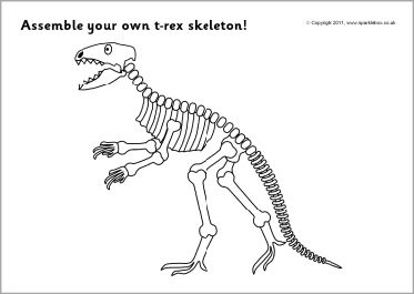 bc bones t rex skeleton instructions