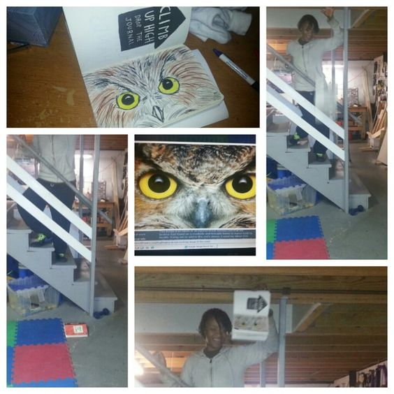 It said to climb up high and drop the journal so I made it into a owl so it can flyyyy lol