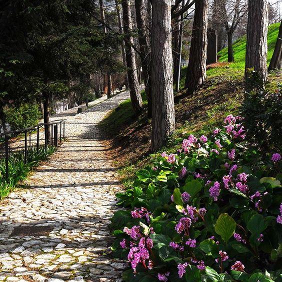 Sentieri di pietra che portano in #Castello #movingculturebrescia #atlantediviaggio #springiscoming #primaverainarrivo #bresciafoto #lookmycity #igersbrescia #igerslombardia #instagood #picoftheday #brixia_scatti #igerslombardia #volgobrescia #vivobrescia #tagsforlikes #follow4follow