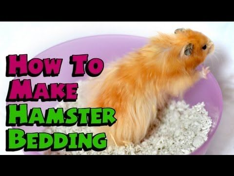 HOW TO: HAMSTER BEDDING ~ Dust Free & 100% Safe!  cool!