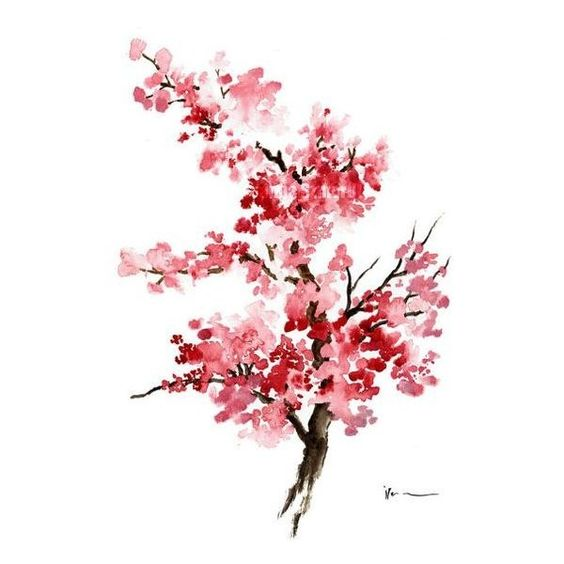 Cherry blossom Original watercolor painting The by ColorWatercolor - finke küchen angebote