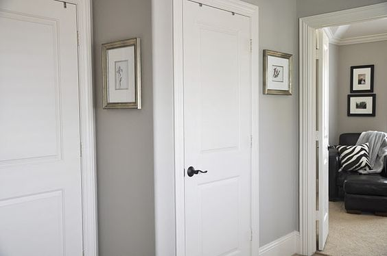 A New Gray by Sherwin Williams